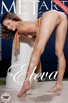 282 MetArt members tagged Divina A and naked pictures gallery Eleva 'athletic'