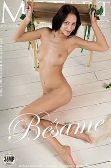18 MetArt members tagged Lydia A and erotic images gallery Besame 'doggy style'