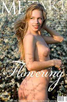 52 MetArt members tagged Liv A and erotic images gallery Flowering 'lovely breasts'