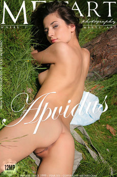 112 MetArt members tagged Irina B and naked pictures gallery Apvidus 'sensual'