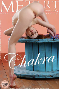 465 MetArt members tagged Annett A and erotic images gallery Chakra 'athletic'