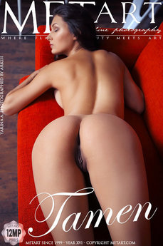 Met Art Tamen erotic images gallery with MetArt model Yarina A