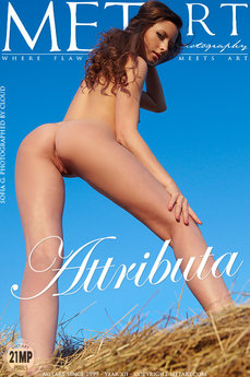MetArt Sofia G Photo Gallery Attributa Cloud