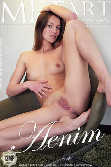 MetArt Gallery Aenim with MetArt Model Solveig