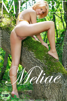 384 MetArt members tagged Violla A and erotic images gallery Meliae 'redhead'