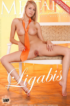 94 MetArt members tagged Barbara D and nude pictures gallery Ligabis 'perfect breasts'